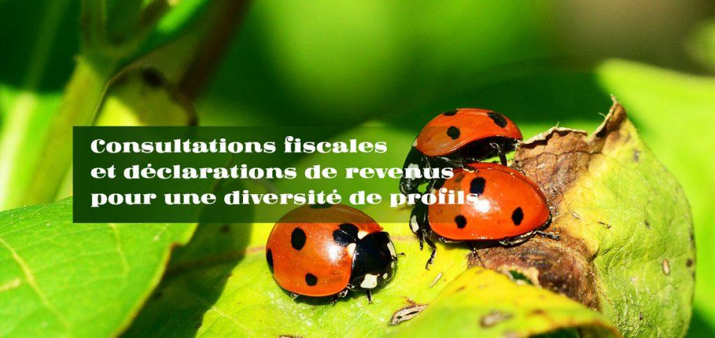 Consultations-fiscales-declarations-revenus